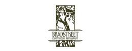 Alchemy Consulting The Bradstreet Crafthouse